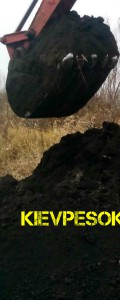 чернозем-плодородный грунт